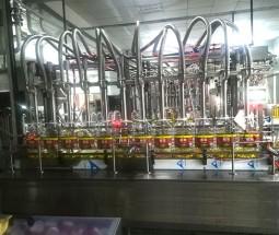 伺服技术灌装机