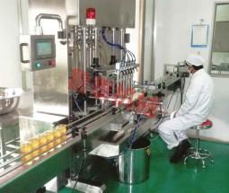 活塞式高粘稠灌装机
